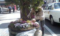 花植え23.4.29-6.jpg
