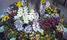 横長:花植え~☆アリッサム☆