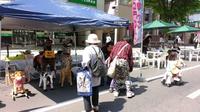 2013.5.26-うまっこエコランド.jpg