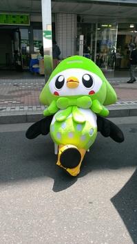 2013.5.26-新いかずきん-2.jpg