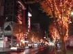 2009年:「十三日の市」11月のお知らせ [市日]