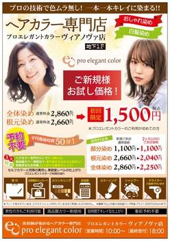 八戸市:美容・健康/プロエレガントカラー[ヘアカラー 美容 トリートメント]
